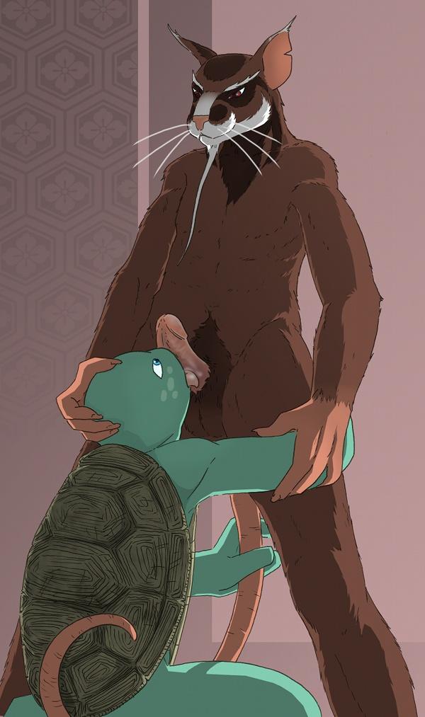 xxx teenage ninja turtles mutant Beast boy and raven fanart